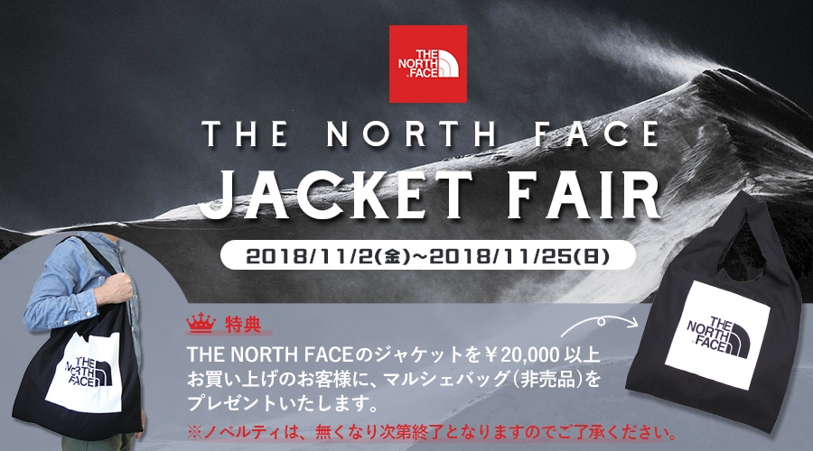【THE NORTH FACE】JACKTE FAIR