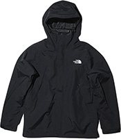 THE NORTH FACE Scoop Jacket 2019FW